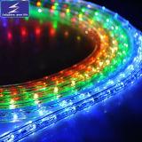 SMD2835 indicatore luminoso di striscia Non-Impermeabile di bianco LED