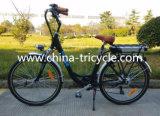 250W Motor Lithium Battery für Electric Bike (SP-EB-06)