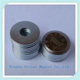 Magneet van het Neodymium van de Zeldzame aarde van NdFeB de Permanente (N48)