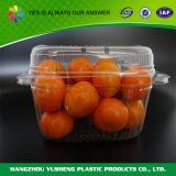 Caixa de empacotamento descartável para a fruta