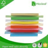 Documento variopinto di formato della lettera per il documento 100% di colore della pasta di legno di stampa dell'ufficio
