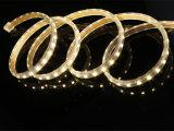AC110/220V Mehrfarben-LED Licht 5050 R/G/B/Y/W/Ww für Dekoration