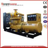 ISO9001 generatore elettrico diesel rapido di consegna 176kw/220kVA 3phase&4wires