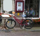Велосипед повелительницы Шика Польки МНОГОТОЧИЯ Типа 250With350With500W электрический/электрический Bike En15194 Bike/Pedelec/E Bicycle/E