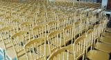 結婚式のための工場供給PPの金属のコアナポレオンの椅子