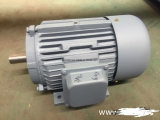 Трехфазный мотор AC 3 участков электрический