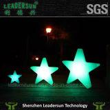 크리스마스 장식적인 LED 별 전구 램프 점화 (LDX-X02)