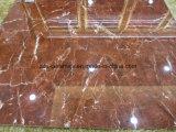 Mattonelle di pavimentazione lustrate porcellana di colore scuro