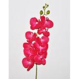 Reale Noten-Samt-künstliche Blumen-Basisrecheneinheits-Orchidee-Pflanze für Dekoration