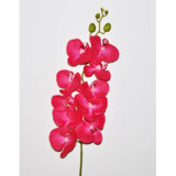 Real Touch Velvet Artificial Flower Butterfly Orchid Plant pour Décoration