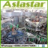 máquina de rellenar automática rotatoria del agua carbónica de la botella 5000bph