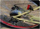 E-Bicicleta aprovada agradável e da viscosidade do passeio da sensação En15194 com etapa completamente
