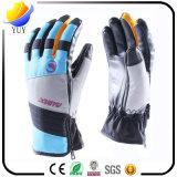 De hoogstaande en Charmante Waterdichte Handschoenen van de Ski en de Handschoenen van Sporten en Warme Handschoenen voor PromotieGiften in de Winter