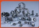 Noix Hex de l'acier inoxydable DIN934 de fournisseur de dispositif de fixation avec le meilleur prix