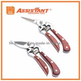 Флористическая рука Pruners PTFE Secateurs покрыла ножницы выкованные падением подрежа