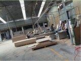 Puerta sólida de la alta densidad WPC de China