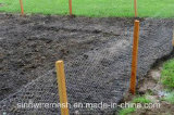 Sailin galvanizó la tela metálica del PVC para la cerca del jardín