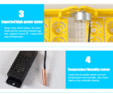 Ce ging het Automatische Transparante Mini 96 Speelgoed van de Incubator van de Kip van Eieren over