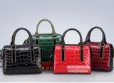 2017 donne di lusso Emg4904 delle borse dei sacchetti della signora Tote del reticolo del coccodrillo del cuoio genuino