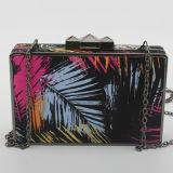Colorer le sac à main acrylique Eb689 d'épaule de sacs de soirée d'impression d'art de dames de collision