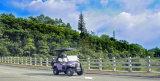 2017 neuer Entwurf 4 Seater elektrisches Golf-Auto