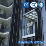 観光のエレベーターの観察のエレベーター