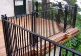 Rete fissa rivestita libera ad alta resistenza del giardino della polvere nera di lucentezza di manutenzione