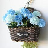 (BC-WF1010) Корзина цветка вербы высокого качества Handmade естественная