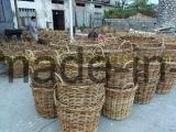 زخرفيّة طحلب حديقة مزارع مجموعة من 2