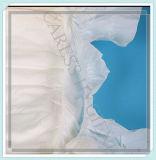 Couches-culottes adultes remplaçables d'OEM de la Chine avec l'indicateur d'humidité