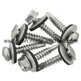 Fournisseur métallisé de rondelles d'EPDM de rondelle de cachetage métallisée de dispositif de fixation d'acier inoxydable de la Chine