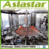 3000bph de automatische Plastic Lijn van de Vullende Machine van de Drank van de Fles Kleine Sprankelende