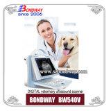 Профессиональный ультразвук цифров измеряя для Veterinary