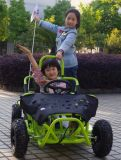 EPA 싼 가스 페달은 Kart/Cocokart 세륨을%s 가진 아이들을%s 간다
