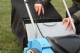 Scarificatore elettrico con il grande collettore supplementare dell'erba