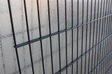 [بفك] كسا يغلفن [وير مش] سياج/مزدوجة حديد سلك يسيّج ([إكسمس45])