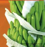 Штрангпресса машины упаковки машины машины пены банана EPE штрангпресса хорошего качества Jc-90 машина пластичного упаковывая