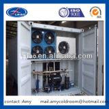 Koude Bergruimte met Parallelle Compressor