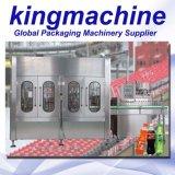 Linea di produzione di riempimento della piccola di bottiglia bevanda di plastica automatica del gas