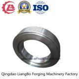 Anillo distribuidor circular de alta calidad para la turbina de vapor con la norma ISO