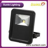 Indicatori luminosi di inondazione caldi del Ce IP66 30W LED di vendita (SLFK23)
