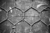 鶏のウサギ犬のケージのための電流を通された六角形の金網の網