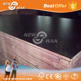 18mm schwarze konkrete Verschalung-Shuttering Furnierholz für Aufbau