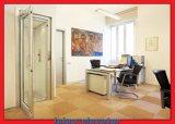 Levage vert d'ascenseur de maison de protection de l'environnement avec la machine Roomless