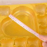goldenes Plastikwegwerfblasentellersegment-Schokoladenverpacken (pp.-Verpacken)