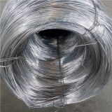 0.7mm 304 нержавеющая сталь Металл в Coil