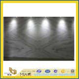 Neues Polished Castro White Marble für Countertop u. Flooring Wall