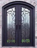 Modèles principaux de porte d'entrée simple de fer travaillé de sûreté
