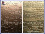 Roestvrij staal In reliëf gemaakte Bladen Colot voor Binnenhuisarchitectuur