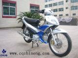 Moto (ZN125-11)
